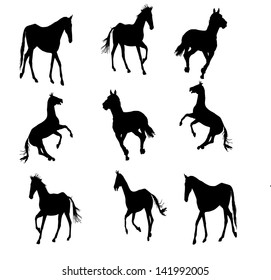 prance horse silhouette, vector illustration , horse race, isolated on white background, set of horses silhouette, group of horses silhouette