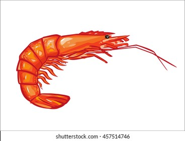 scampi stock images royalty free images vectors shutterstock rh shutterstock com