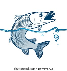 Of predator fish that is jumping from the water. Vector illustration.
