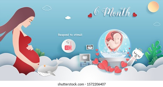 Pregnancy 6-month Stages of development. Process of human fetal growth in pregnancy and mother and baby infographic Happy Mother's Day beautiful woman and child.Vector illustration