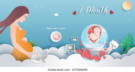 Pregnancy 7-month Stages of development. Process of human fetal growth in pregnancy and mother and baby infographic Happy Mother's Day beautiful woman and child.Vector illustration