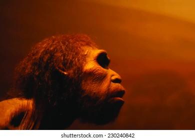 prehistoric man vector portrait