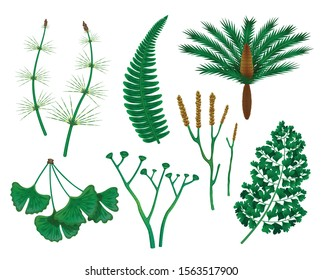 Prehistoric plants set with isolated images of wild herbs of the prehistoric times on blank background vector illustration