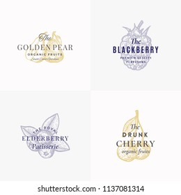 Premium Fruits and Berries Abstract Vector Signs, Symbols or Logo Templates Set. Hand Drawn Apple, Pear, Blackberry, Elderberry and Cherry Sketches with Retro Typography. Vintage Emblems. Isolated.