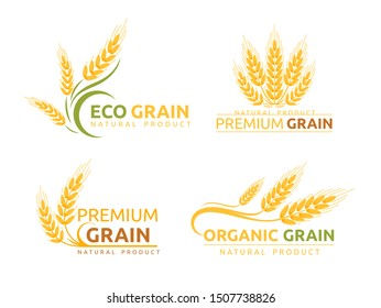 Premium grain flat vector logotype designs set. Organic cereal crops, natural product advertising. Ripe wheat ears cartoon illustrations with typography. Eco farm, bakery shop logo concepts pack.