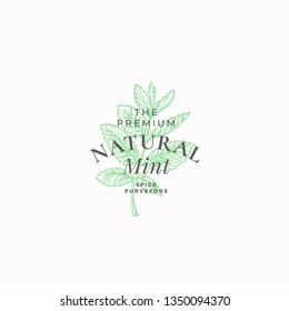 Premium Natural Mint Abstract Vector Sign, Symbol or Logo Template. Mint Branch with Leaves Sketch Illustration with Retro Typography. Vintage Luxury Emblem. Isolated.