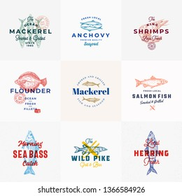 Premium Seafood Vector Signs or Logo Templates Set. Hand Drawn Vintage Fish Sketches with Classy Typography, Tuna, Mackerel, Salmon, Shrimp, Herring etc. Retro Restaurant and Seafood Emblems. Isolated