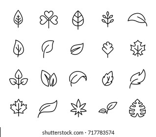 Premium set of leaf line icons. Simple pictograms pack. Stroke vector illustration on a white background. Modern outline style icons collection.