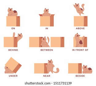 Preposition of place illustration with cute cat and box. Vector cartoon set isolated on a white background.