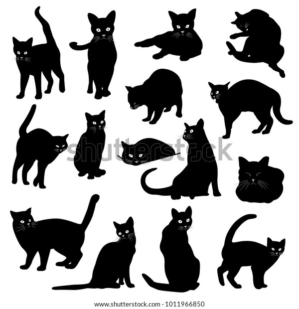 Pretty Cat Illustration I Made Illustration Stock Vector Royalty Free 1011966850