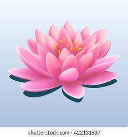 Pretty pink water lily or lotus flower with drop shadow over a gradient grey background, vector illustration