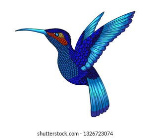 Pretty small hummingbird. Jacobin bird. Exotic tropical colibri animal element, icon or label. Sapphire and blue feathers. Use for wedding, party. Engraved hand drawn as old sketch.