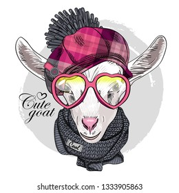 Pretty white goat with pink glasses, pink checkered cap and gray knitted  scarf. Hand drawn illustration of dressed goat. Vector illustration.