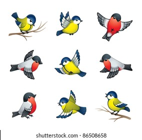 Pretty winter birds: tits and bullfinches. EPS8 vector format.