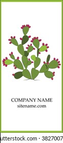 Prickly pear business card design.