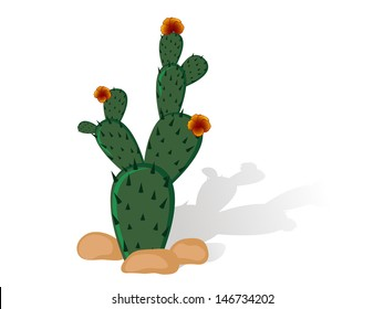 Prickly pear - cactus with red blooms