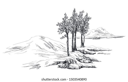 Print with trees and hills in toile de jouy stile in black and white graphic