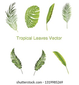 Print Tropical Leaves Vector