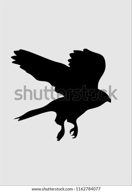 photo about Bird Silhouette Printable called Printable Chicken Silhouette Inventory Vector (Royalty No cost) 1162784077