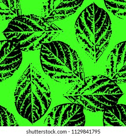 Prints of leaves of trees. Seamless pattern. Black elements, green background