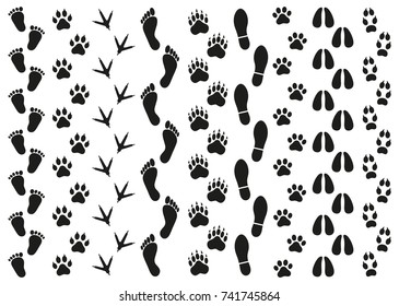 prints of traces of people and animals on a white background
