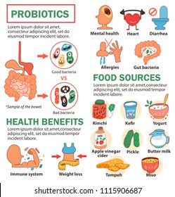 Probiotics infographics with the intestine and bacteria, its health benefits and the food sources, illustration, vector