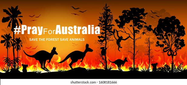 Problems forest fire burns in Australia. Forest fires with silhouette of wild animals Kangaroo, Koala, Monkey, Snake, and Bird. Save the forest Save animals. Vector illustration.
