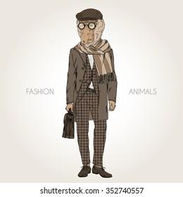 proboscis monkey dressed up in suit and coat, fashion animal illustration