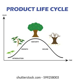 Product Life Cycle on White Background