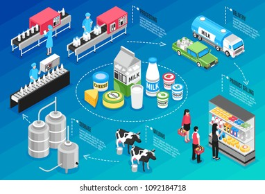 Production delivering and selling milk and cheese products isometric infographics on blue background 3d vector illustration