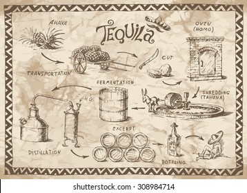 Production scheme of tequila on the old paper background