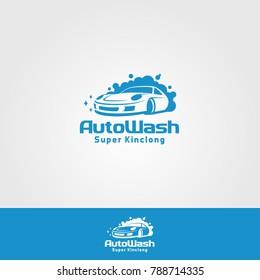 Professional Car Wash Company or Business Logo