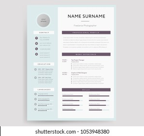 Professional CV / Resume template sample