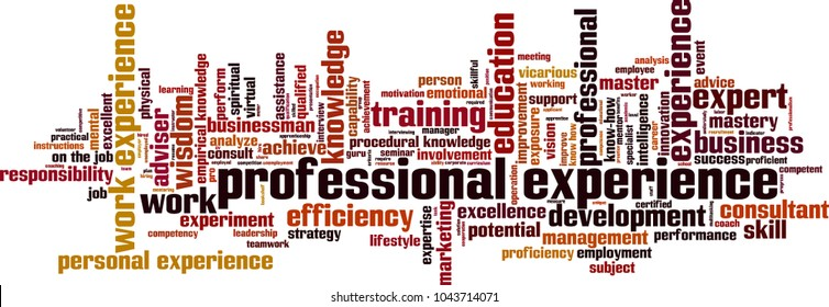 Professional experience word cloud concept. Vector illustration