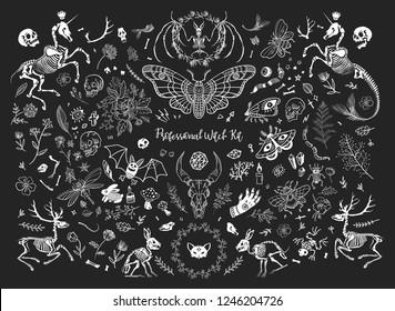 Mystic Flower Stock Illustrations Images Vectors Shutterstock