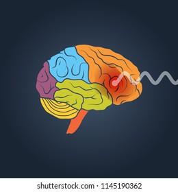 Profile view of a human brain. Brain activity vector concept