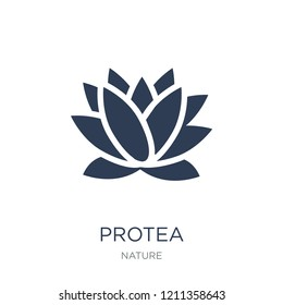 Protea icon. Trendy flat vector Protea icon on white background from nature collection, vector illustration can be use for web and mobile, eps10