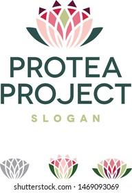 Protea / Lily / Lotus flower logo icon