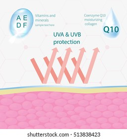 protection of the skin from the effects of the environment, hyaluronic acid infographics