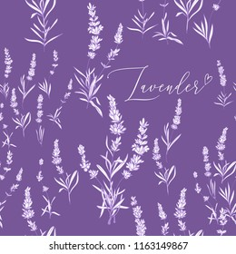Provence lavender seamless pattern background. Fine botanical illustration on purple lavender background. Vintage style lavender outline sketches drawn white ink or pen.