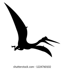 Pteranodon Pterodactyl  vector silhouette illustration isolated on white background