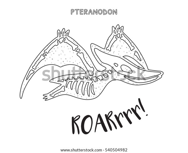 Pteranodon Skeleton Outline Drawing Fossil Pteranodon Stock ...