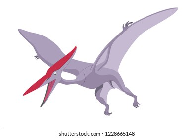 Pterodactyl vector illustration isolated in white background. Dinosaurs Collection.