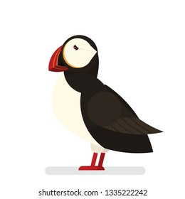 Puffin bird. Animal with black and white fur and big yellow and red beak. Creature from iceland. Isolated vector illustration in cartoon style