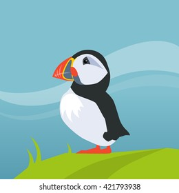 Cartoon Puffin High Res Stock Images | Shutterstock