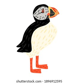 Puffin stand isolated on white background. Cute seabird lives by the ocean, has black and white color, has orange beak and legs. In doodle style vector illustration.