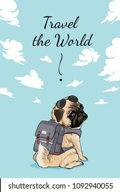 Pug with backpack and sunglasses illustration