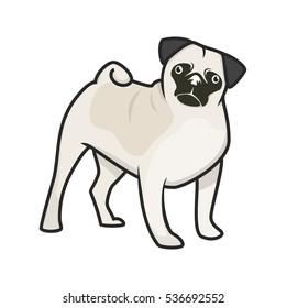 Pug cute funny dog. Vector Illustration