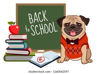 Pug dog back to school cartoon illustration. Cute friendly pug puppy, smiling with tongue out, wearing argyle vest and bow tie, near blackboard, stack of books, textbook with a plus mark, apple.