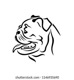 Pug dog face - isolated vector illustration